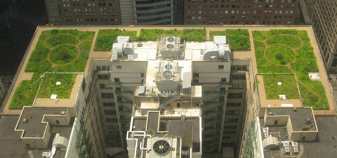 Gründach der Chicago City Hall